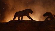 Lionking2019-animationscreencaps.com-11960