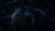 Lionking2019-animationscreencaps.com-8269