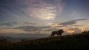 Lionking2019-animationscreencaps.com-3473