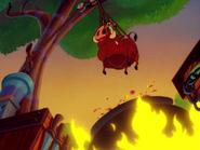 BN Timon & Pumbaa22