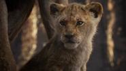 Lionking2019-animationscreencaps.com-5374