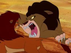RA Simba & Claudius3