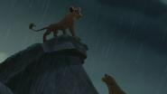 Lion-king2-disneyscreencaps.com-8172