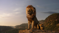 Lionking2019-animationscreencaps.com-1327