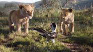 Lionking2019-animationscreencaps.com-2247