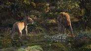 Lionking2019-animationscreencaps.com-9800