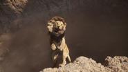 Lionking2019-animationscreencaps.com-5081