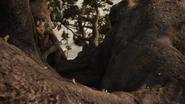 Lionking2019-animationscreencaps.com-8737