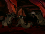 CTAY hyenas30