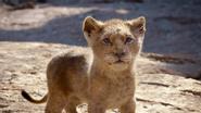 Lionking2019-animationscreencaps.com-4589