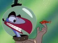 ZOBOD Zazu & fish4
