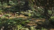 Lionking2019-animationscreencaps.com-6953