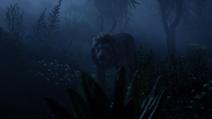 Lionking2019-animationscreencaps.com-9929