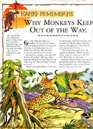 Monkeyskeep1