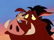 DOA Timon & Pumbaa7