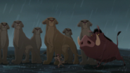Lion-king2-disneyscreencaps.com-7993