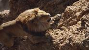 Lionking2019-animationscreencaps.com-5025
