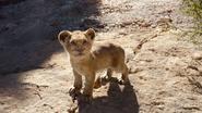 Lionking2019-animationscreencaps.com-4575