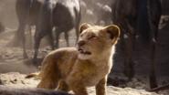 Lionking2019-animationscreencaps.com-4908