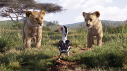 Lionking2019-animationscreencaps.com-2258