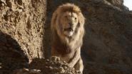 Lionking2019-animationscreencaps.com-4846