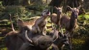 Lionking2019-animationscreencaps.com-8969