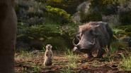 Lionking2019-animationscreencaps.com-9232