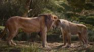 Lionking2019-animationscreencaps.com-9273