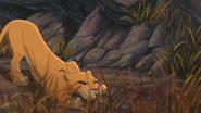 Lion-king2-disneyscreencaps.com-3583