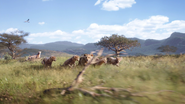 Lionking2019-animationscreencaps.com-2352