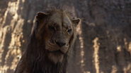 Lionking2019-animationscreencaps.com-5424
