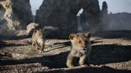 Lionking2019-animationscreencaps.com-2926