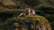 Lionking2019-animationscreencaps.com-9574