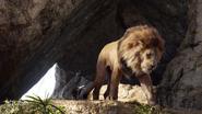 Lionking2019-animationscreencaps.com-958