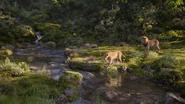 Lionking2019-animationscreencaps.com-9837