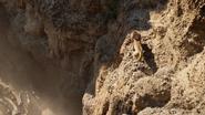 Lionking2019-animationscreencaps.com-4829