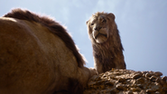 Lionking2019-animationscreencaps.com-5037