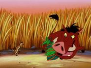 KBMF Timon & Pumbaa5