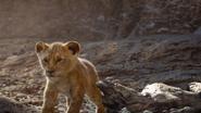 Lionking2019-animationscreencaps.com-5186