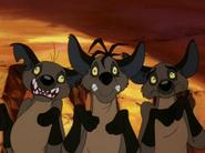 CTAY hyenas18