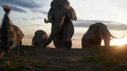 Lionking2019-animationscreencaps.com-158