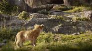 Lionking2019-animationscreencaps.com-1727