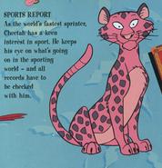 TLK Sports report