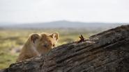 Lionking2019-animationscreencaps.com-1796