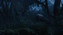 Lionking2019-animationscreencaps.com-10047