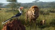 Lionking2019-animationscreencaps.com-1545
