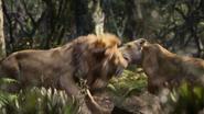 Lionking2019-animationscreencaps.com-9108