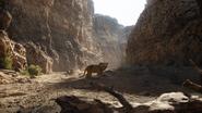 Lionking2019-animationscreencaps.com-5150