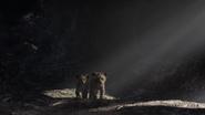 Lionking2019-animationscreencaps.com-3056