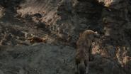 Lionking2019-animationscreencaps.com-3439